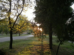 2018-08-11-952 (vale 83) Tags: early morning sun nokia n8