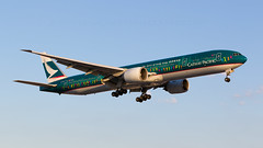 The Spirit Of Hong Kong. (spencer_wilmot) Tags: green 777 777300 777300er 773 77w b777 b77w b773 lhr landing london longhaul lhregll twin widebody specialcolours speciallivery specialmarkings cx cxcpa cpa cathaypacific heathrow heavy huge long massive boeing boeing777 aviation aircraft airplane airliner airport arrival approach civilaviation commercialaviation bluesky evening eveninglight dusk sunset ils jet jetliner egll plane passengerjet thespiritofhongkong