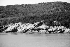 Maine2018_14 (paul.imburgia) Tags: maine bar harbor mount desert island nature travel photography oceanview oceanscape landscape 2018 august new england northeast paul imburgia black white color