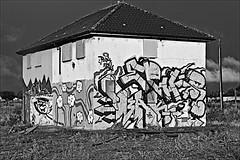 Preston Rd Estate  Monochrome (brianarchie65) Tags: prestonroad streetart graffiti lapollution ngc kingstonuponhull blackandwhite blackandwhitephotos blackandwhitephoto blackandwhitephotography blackwhite123 blackwhiterealms flickrunofficial flickr flickruk flickrinternational ukflickr canon eos 600d geotagged brianarchie65 derlict dereliction