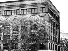 Abandoned Antiquity (Ellery Images) Tags: elleryimages abandoned urban trees monochrome blackandwhite building brick architecture antiquity
