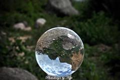 Rügen auf dem Kopf (NoireRose) Tags: glasball glaskugel glaskugelfotografie nikon rügen ostsee mecklenburgvorpommern osten d90 natur nature natura photodesignbykati sommer summer sonne deutschland germany allemange