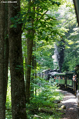 Noisy Woodland Creature (nrvtrains) Tags: westvirginia cass logging cassscenicrailway shay steam unitedstates us