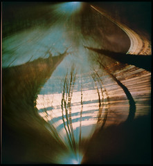 Woodpecker effect (batuda) Tags: bird woodpecker damage solargraphy solargraph solarigraphy solarigrafia sun solar solarpath track trail arch solstice longexposure pinhole obscura stenope lochkamera analog analogue can beer beercan horizontal cylindrical paper kodak polymax 16x18 landscape skyscape tree trees lime branches 4490photo šinkūnai tauragnai utena lithuania lietuva