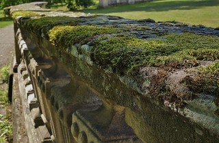 GERMANY , alte Mauerreste mit Moos,  76469/10477