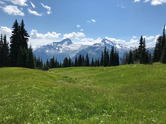 Whistler Alpine Meadow (Glen Gecko) Tags: glacier meadow alpine