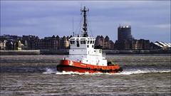 Smit Waterloo Tug (Elaine 55.) Tags: tugboat rivermersey
