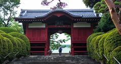 The visitor (tokyobogue) Tags: tokyo japan ikebukuro nikon nikond7100 d7100 35mmf18g gokokuji gokokujitemple temple buddhist furomon gate red steps