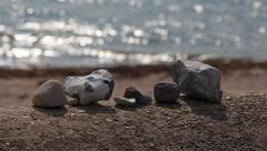Ein letzter Blick aufs Meer. (♥ ♥ ♥ flickrsprotte♥ ♥ ♥) Tags: strande bülk flickrsprotte 2018 urlaub steine strand ostsee natur bokeh