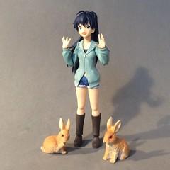 Hibiki Knows: It's Better with Bunnies! (Sasha's Lab) Tags: hibiki ganaha idolmster teen idol girl rabbit bunny figma action figure jfigure gsc explored