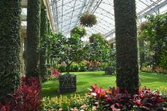 Kennett Square, PA - Longwood Gardens - Conservatory - Main Conservatory (jrozwado) Tags: northamerica usa pennsylvania garden conservatory kennettsquare longwoodgardens flower hangingbasket