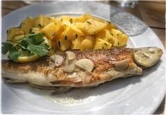 Reinanke (Margug) Tags: food fisch reinanke