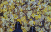 img269.jpg (happycooler) Tags: oldcamera осень old 135c21102015 пленка пейзаж город абакан film kodak