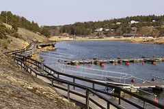 Enhuskilen 1.3, Kråkerøy, Norway (Knut-Arve Simonsen) Tags: kråkerøy enhus enhuskilen frederikstad norge норвегия norway noriega norwegen norvegia norvège नॉर्वे 挪威 ノルウェー நோர்வே νορβηγία sydnorge sørnorge østlandet oslofjorden østfold viken norden scandinavia скандинавия э́стфолл фре́дрикстад гло́мма ослофьорд