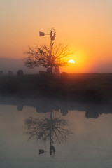 Daybreak || Richmond Lowlands || Sydney (David Marriott - Sydney) Tags: richmondlowlands newsouthwales australia au nsw sydney richmond dawn sunrise daybreak reflection lake pond sun windmill tree