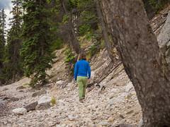 jasper 2017 090 (adamlucienroy) Tags: jasper jaspernationalpark nationalpark forest gh4 panasonic telephoto leica primelens prime 25mm f14 alberta edmonton yeg yegdt canada