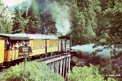 060822-14cs-18 (lmyers83) Tags: baldwin steam bridge animas river