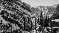 Kings Canyon - Sequoia - 2018 (hermitsmoores) Tags: fx hiking kingscanyon kingscanyonnationalpark kingsriver nationalparks sequoianationalpark sequoias animals blackwhite bw d800 deer flowers forest fullframe mountains nature nikon nikond800 woods zen