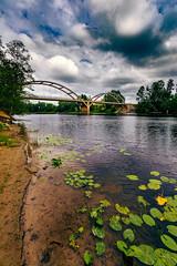 Bridge over Klarälven River (Thor Thorsson 1) Tags: klarälven bridge sweden värmland beach aquaticplant