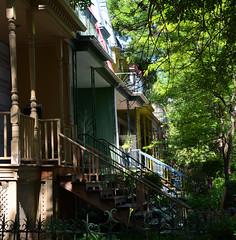 DSC_5745a (Fransois) Tags: ruewaverly waverlystreet montréal mileend escaliers stairs façade devanture escalierextérieur frontage outsidestaircase feuillage foliage maisons houses
