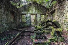 (Kollaps3n) Tags: abandoned abandonedfactory abbandono decay urbex urbanexploration abandonedplaces nikon