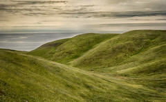 As Far As the Eye Can See - Atop Big Hill (SNAPShots by Patrick J. Whitfield) Tags: green grass hills mountains path pathway landscapes nature outside explorecanada explore adventure life hiking vacation sea seaside ocean waves water shore skies clouds cloudscapes rocks lines patterns texture detail dof island paysage bay weather