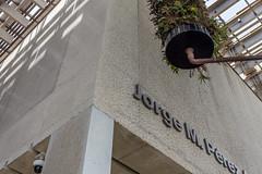 IMG_3707.jpg (patrick t ngo) Tags: architecture downtownmiami herzogdemueron miami museum museumpark pamm pérezartmuseummiami