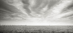 Horizon (johnlishamer.com) Tags: 2018 35mm ilfordfp4125 lakemichagan lishamer nikonf3 slr chicagoil family film johnlishamercom rodinal summer
