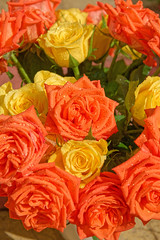 Roses (Geoff Henson) Tags: flower rose yellow orange wet water droplets bouquet bunch
