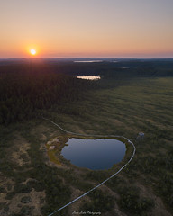 This is Finland. (laurilehtophotography) Tags: suomi finland leivonmäki nationalpark kansallispuisto sunset auringonlasku sky nature landscape aerial drone dji mavic pro pond duckboards summer evening awesome europe swamp marsh