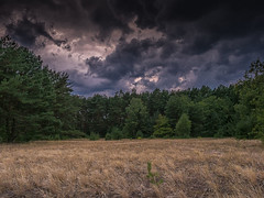 End of the drought? (Steppenwolf33) Tags: sky weather clouds steppenwolf33 meadow drought forest köpenick berlin