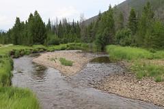 Colorado River (Sven Bonorden) Tags: outdoor landschaft landscape bäume trees pebble kies wasser water rockymountainsnationalpark rockymountains fluss river colorado coloradoriver