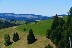Oberweidli Eggiwil (Martinus VI) Tags: emmental eggiwil schangnau kanton de bern canton berne berna berner bernese schweiz suisse suiza switzerland svizzera swiss y180812 martinus6 martinus6xy martinusvi martinus 12082018