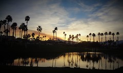 California Sunsets (Spebak) Tags: spebak sunset socal southerncalifornia desert water palms palmtrees coachellavalley palmdesert bluesky clouds reflections