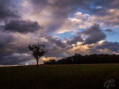 Sommerabend im Taunus (Bluespete) Tags: abendhimmel clouds fc gewitter goldenergrund landscape landschaft psifotografie psi sky sommerabend sonnenuntergang summer sunset taunus wolken wolkenkulisse exif:lens=olympusm1442mmf3556ez camera:make=olympus exif:make=olympus geocity geostate geocountry geolocation exif:model=em10markii exif:focallength=15mm exif:isospeed=200 geo:lat=50282111861112 geo:lon=83063842222217 camera:model=em10markii exif:aperture=ƒ90