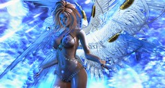 Seraphim (clau.dagger) Tags: aii egosum egosumaii bento wings thefantasygachacarnival dm deviousmind harness gacha secondlife fantasy avatar fashion angel exile insol catwa maitreya eve anc poseidonposes