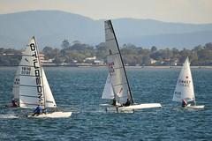 800_4969 (Lox Pix) Tags: queensland qld australia catamaran trimaran hyc humpybongyachtclub winterbash loxpix foilingcatamaran foiling bramblebay sailing race regatta woodypoint boat