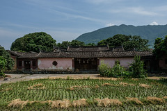 Travel in Quanzhou & Yongchun County (Ache_Hsieh) Tags: 刺桐 溫陵 清源 泉郡 泉州 永春 中國 china travel quanzhou yongchun county old house 古蹟 fujifilm xt2 fujinon xf 1655mm f28 r lm wr 東溪大峽谷 樹 建築物 森林 草