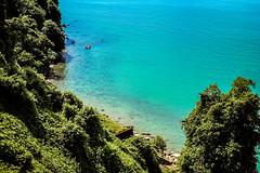 Beyond the ties (Melissa Maples) Tags: batumi batum ბათუმი adjara აჭარა georgia gürcistan sakartvelo საქართველო asia 土耳其 apple iphone iphonex cameraphone მწვანეკეპი mtsvanecape ბოტანიკურიბაღი botanicalgarden blacksea sea water blue green