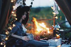 Adventure is calling IV (AzureFantoccini) Tags: bjd abjd doll dollhouse bokeh forest fire travel camp camping zaoll dollmore luv miniature diorama nature stilllife balljointeddoll