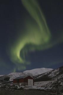 Red cabin below northern lights at Kvaløya, Tromsø, Norway