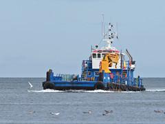 M2113999 E-M1ii 300mm iso400 f5.6 1_2500s (Mel Stephens) Tags: 20180811 201808 2018 q3 4x3 wide olympus mzuiko mft microfourthirds m43 300mm pro omd em1ii ii mirrorless torry uk scotland aberdeen coast coastal transport boat