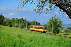 Im Karlsruher Outback (trainspotter64) Tags: strasenbahn tram tramway tranvia tramvaj tramwaje tramtrain stadtbahn düwag karlsruhe avg vbk streetcar überlandbahn schwarzwald badenwürttemberg baden gt880c albtal frühling