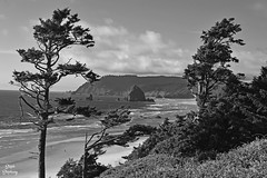 DSC_2252 ~ Ecola Point, Ecola State Park, OR B&W (stephanie.ovdiyenko) Tags: ecolapoint ecolastatepark oregon pacificcoast pacificocean pacificnorthwest ocean shoreline rocks beach blackandwhite