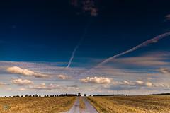 10082018-_DSC0012 (5) (carlo photo plaisir) Tags: nature soleil belgique