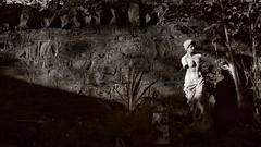 1050014-01.jpeg (aderixon) Tags: garden statue wall stone shadow evening sundown figure plant diagonal