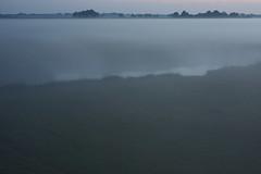 on invisible carpet (Mindaugas Buivydas) Tags: lietuva lithuania color summer june evening eveninglight twilight fog mist delta nemunasdelta nemunasdeltaregionalpark nemunodeltosregioninisparkas favoriteplaces mindaugasbuivydas memelland