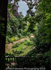 Plantation Garden, Norwich, Norfolk, U.K. (Neil Fellowes) Tags: neilfellowes neilfellowesphotography manof2worlds canon 60d 24mmlens pancakelens plantationgarden norwich norfolk flowers gardens formerchalkpit victoriangarden