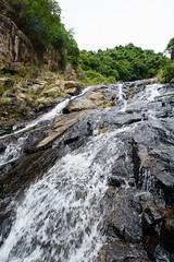 DSC_1859 (sch0705) Tags: hk hiking shuilochostream lantau stream