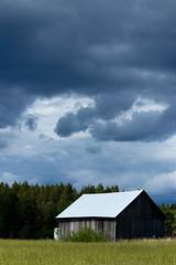 Storm approaching (Jutta Sund) Tags: clouds storm barn field forest finland rural